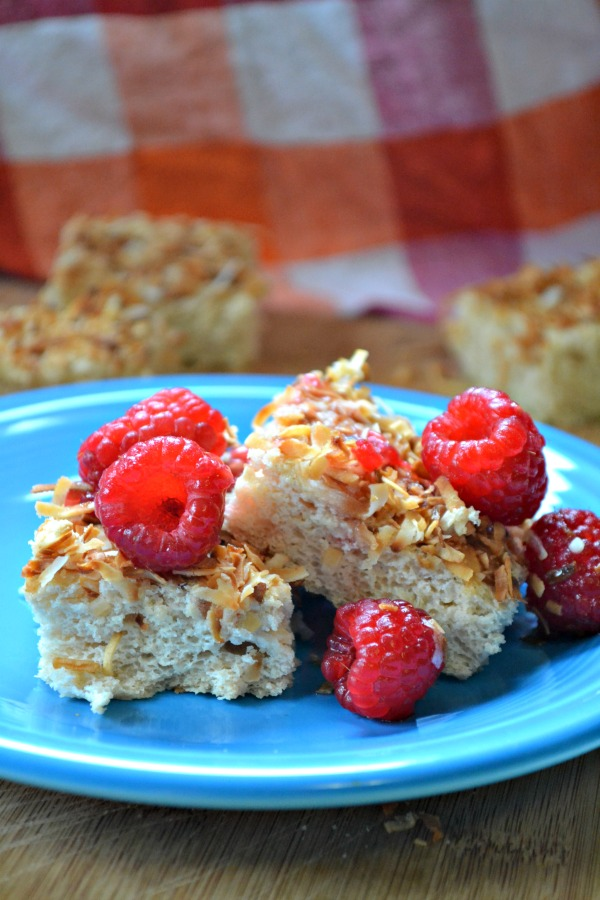 angel food cake bars with fresh raspberries