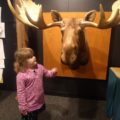 Bell Museum of Natural History – Minneapolis, Minnesota