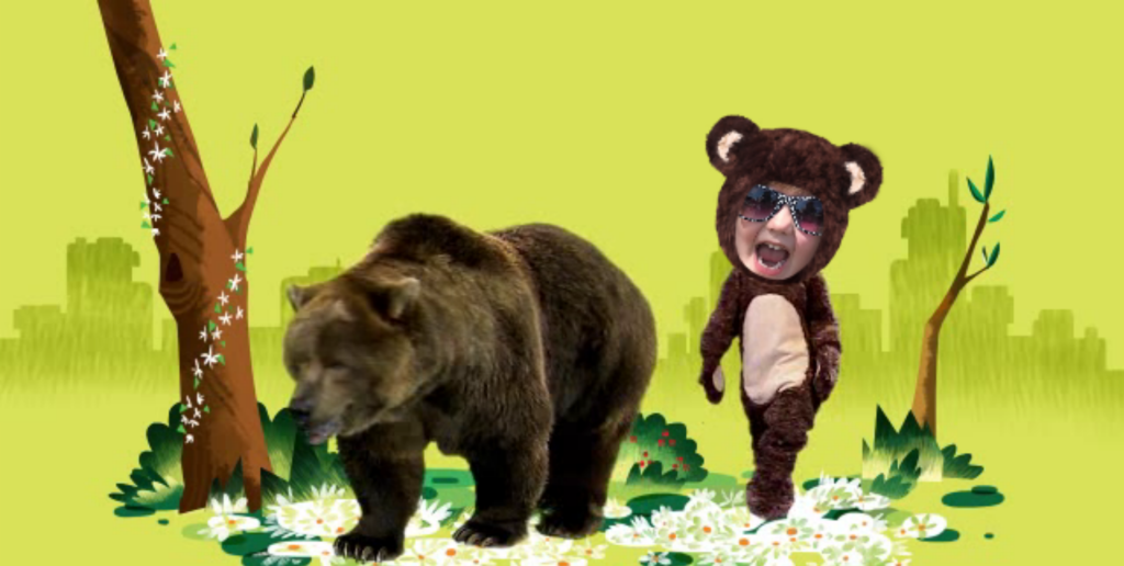 big-brown-boogie-bear