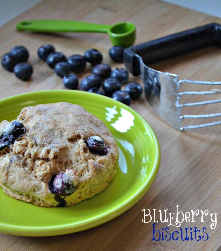 blueberry biscuits recipe the domestic geek