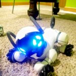 These are the robots your kids are looking for this holiday season.