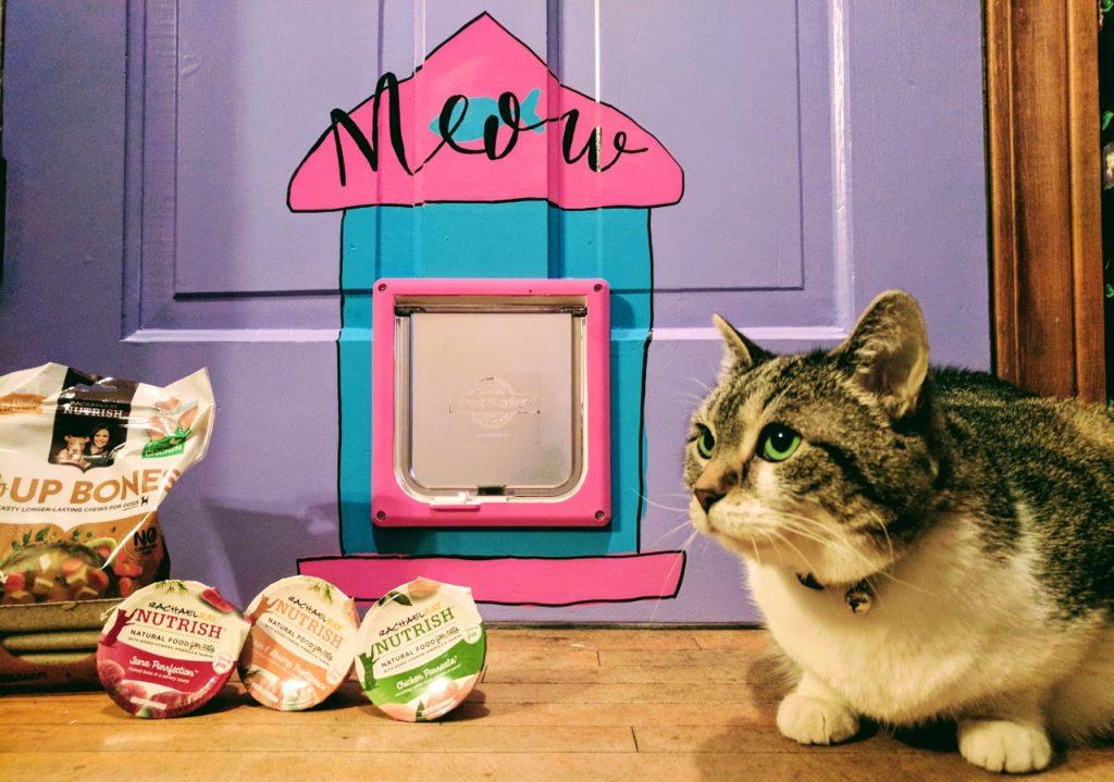 painted cat door diy the domestic geek blog