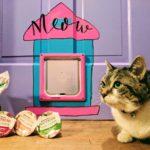 Painted Cat Door DIY