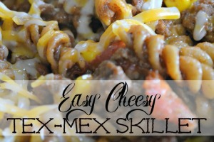 easy-cheesy-tex-mex-skillet