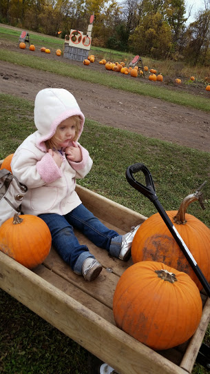 pumpkin patch wagon